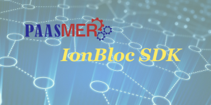 Paasmer-IonBloc-Sdk-300x150