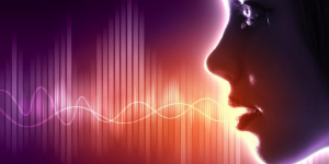 voice_process-300x150